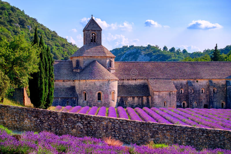 Lavendelgebieden bij Senanque-klooster, de Provence, Frankrijk stock foto's