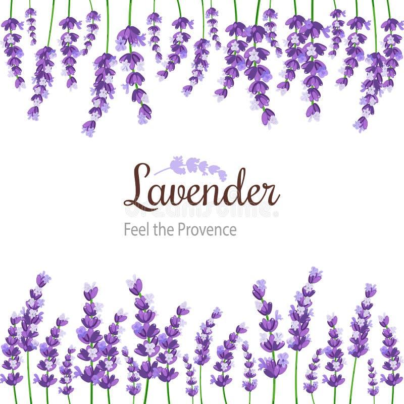 Lavendelkaart met bloemen Uitstekend Etiket met de violette lavendel van de Provence royalty-vrije illustratie