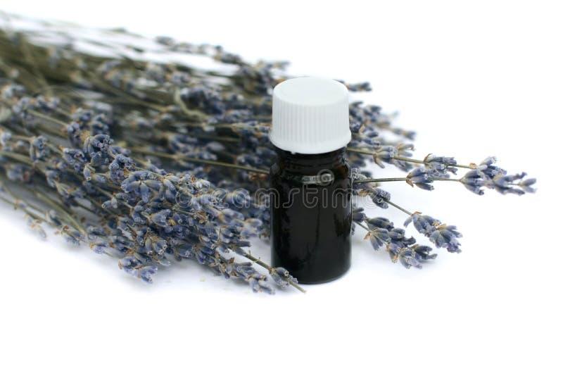 Lavendelkraut und wesentliches Schmieröl stockfotografie