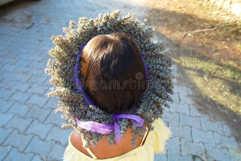 Lavendelkrone stockfoto