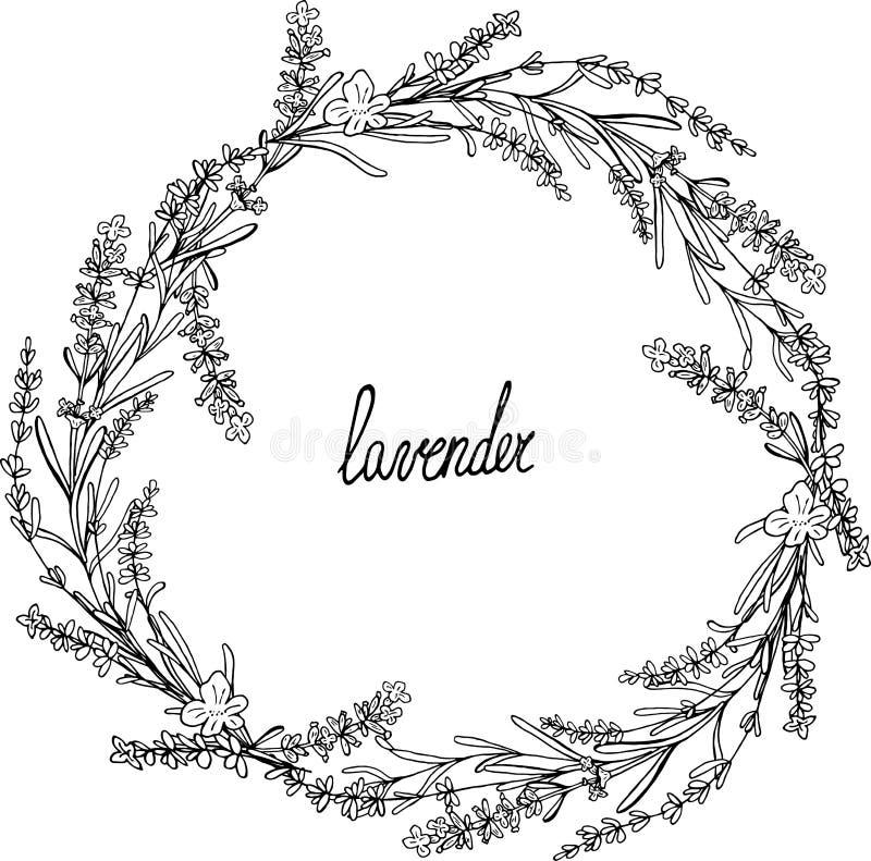 Lavendelkronenrahmen mit Blättern lizenzfreie abbildung