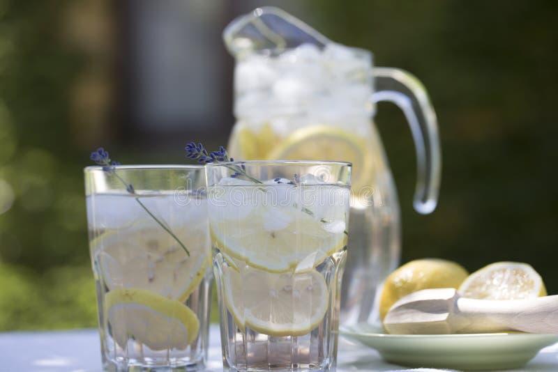 Lavendellemonad i glass tillbringare- och coctailexponeringsglas, på ljus bakgrund arkivfoton