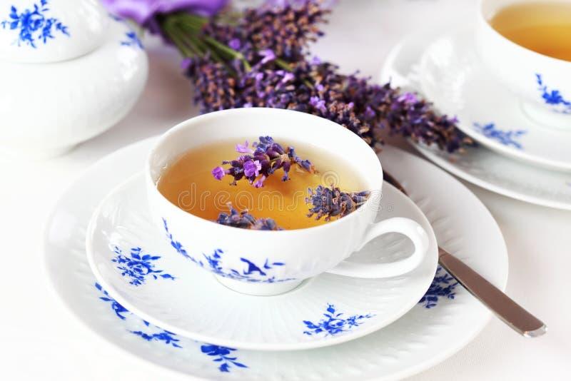 Lavendeltee lizenzfreie stockbilder