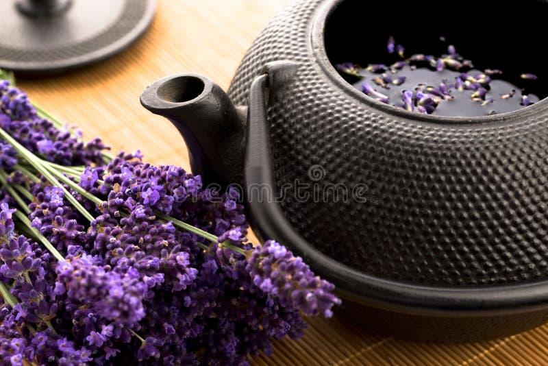 Lavendeltee stockbild