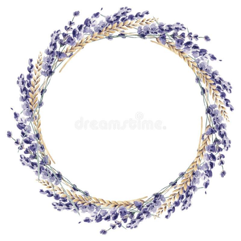 Lavendelvattenfärghanden målade blom- blommaprov för illustrationen stock illustrationer