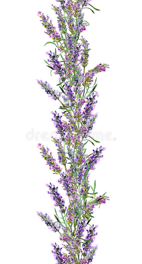 Lavender άνευ ραφής πλαίσιο και πεταλούδες Λωρίδα Watercolor ελεύθερη απεικόνιση δικαιώματος