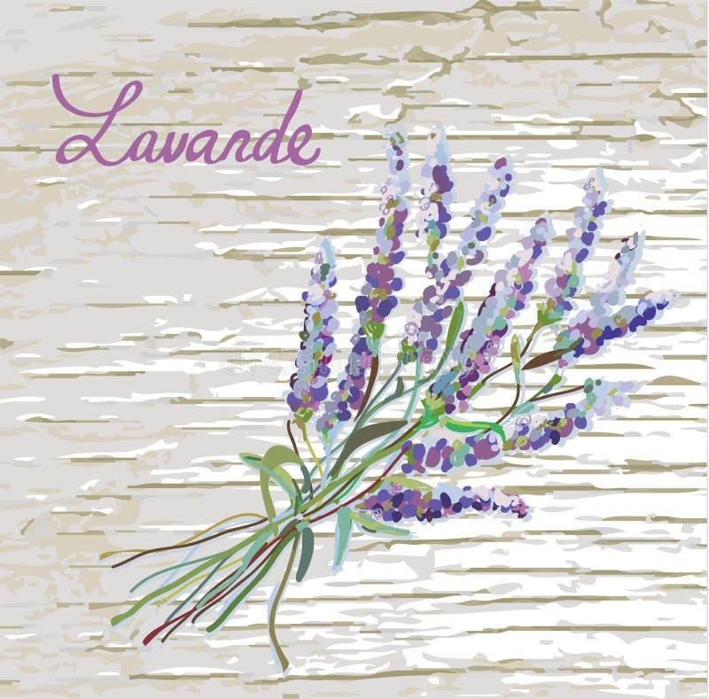 Lavender αγροτικό υπόβαθρο με το συμπαθητικό σχέδιο διανυσματική απεικόνιση