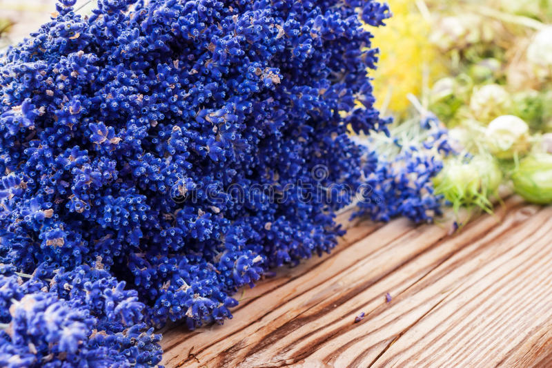 Lavender και μαύρο κύμινο στοκ εικόνες με δικαίωμα ελεύθερης χρήσης