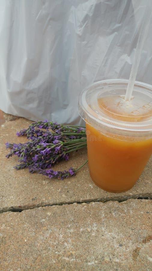 Lavender και μηλίτης στοκ εικόνες