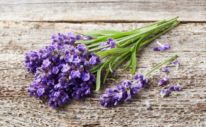 Lavender λουλούδια στο ξύλινο υπόβαθρο στοκ φωτογραφία με δικαίωμα ελεύθερης χρήσης