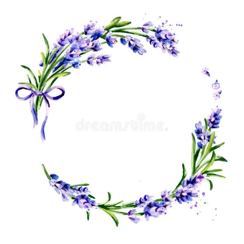Lavender λουλούδι γύρω από το υπόβαθρο Συρμένη χέρι απομονωμένη απεικόνιση Watercolor στοκ εικόνα