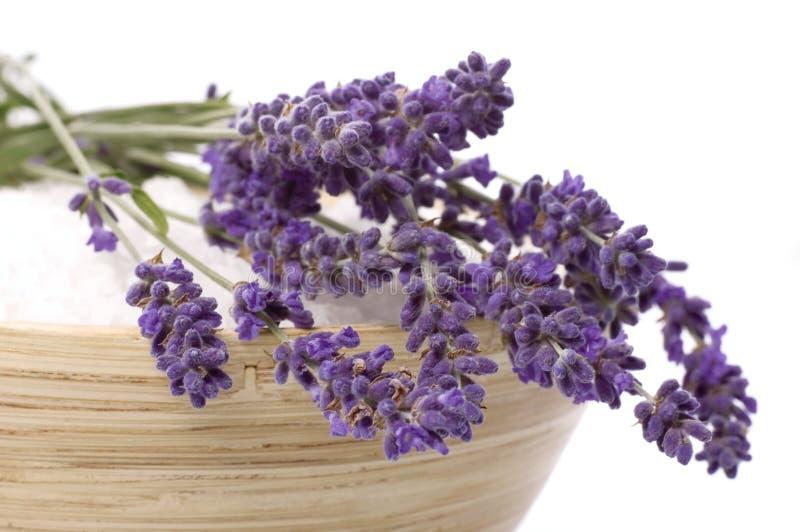 lavender λουτρών στοκ φωτογραφίες με δικαίωμα ελεύθερης χρήσης