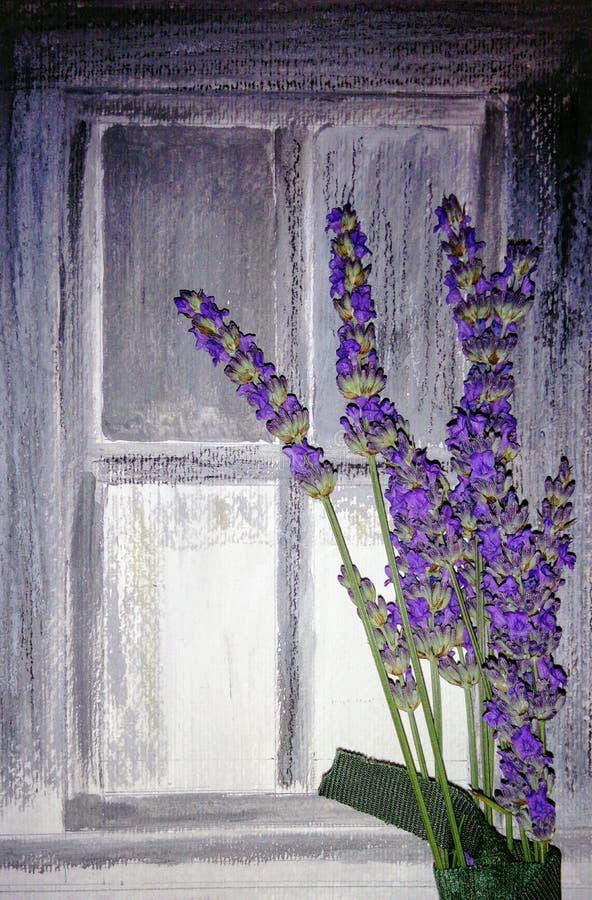 Lavender μπροστά από τον τοίχο πετρών απεικόνιση αποθεμάτων