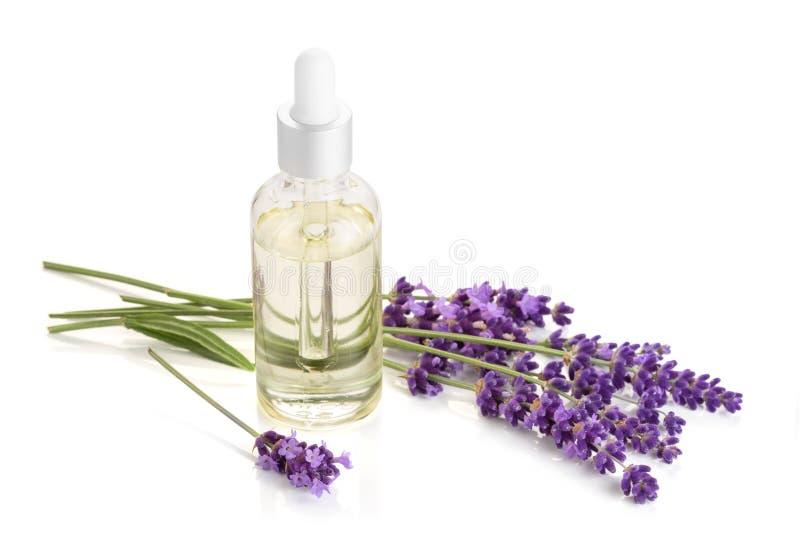 Lavender ουσιαστικό πετρέλαιο που απομονώνεται στο άσπρο υπόβαθρο στοκ φωτογραφίες με δικαίωμα ελεύθερης χρήσης