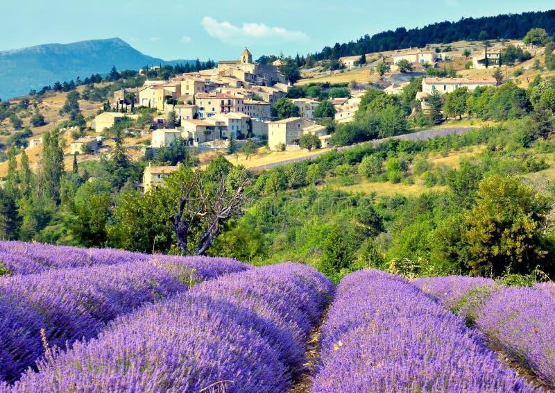lavender πεδίων χωριό στοκ φωτογραφία με δικαίωμα ελεύθερης χρήσης