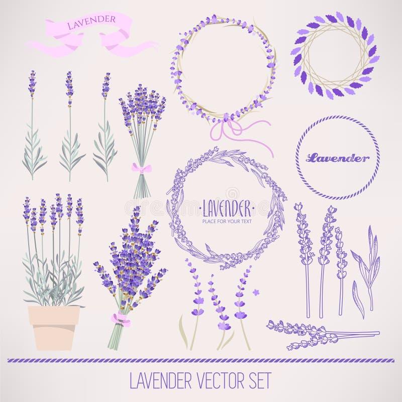 Lavender σύνολο διανυσματική απεικόνιση