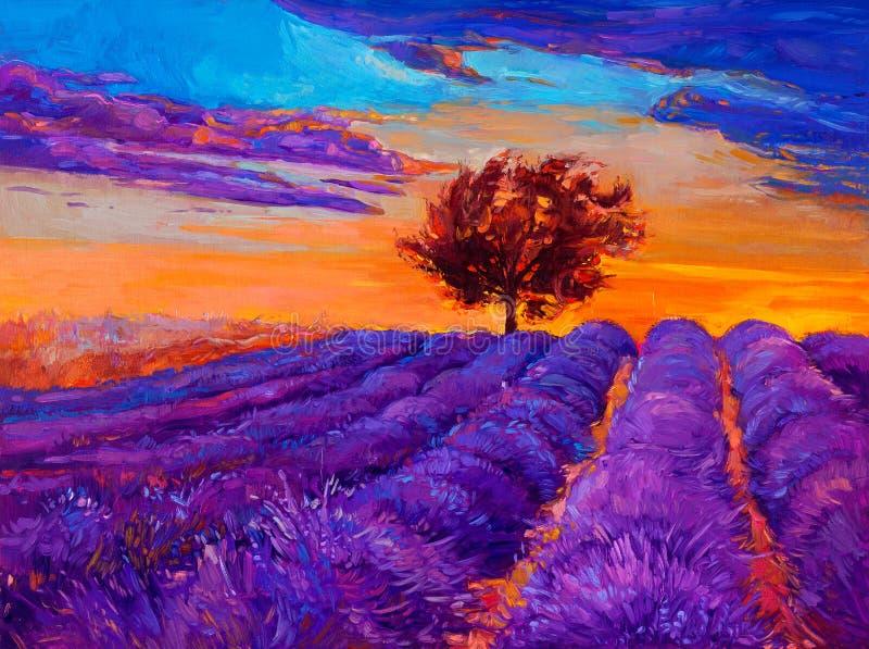 Lavender τομείς διανυσματική απεικόνιση