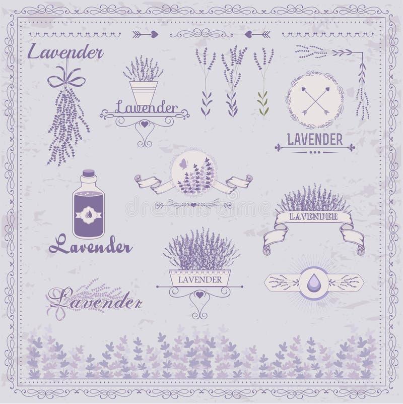 Lavender, χορτάρι, λουλούδι, floral τρύγος, διανυσματική απεικόνιση