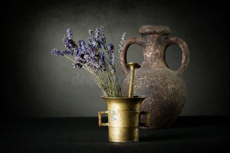 Download Lavender Stock Photos - Image: 13102743