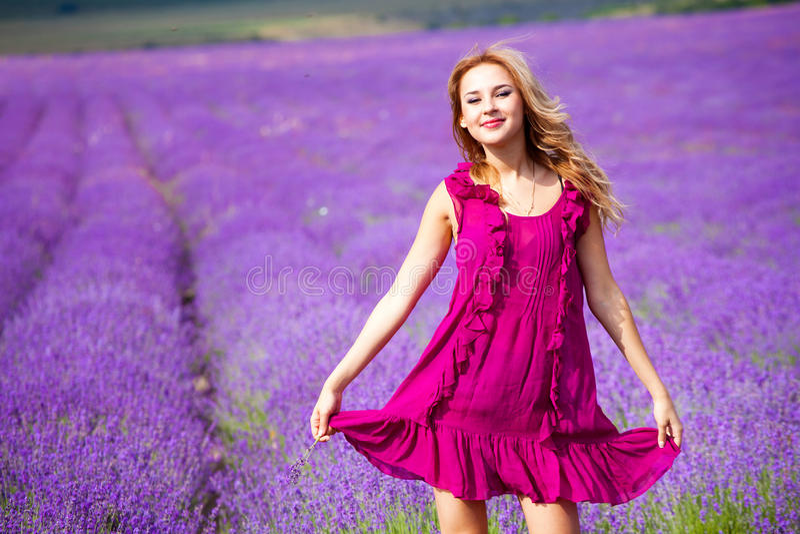 Download Lavender Stock Image - Image: 20127001