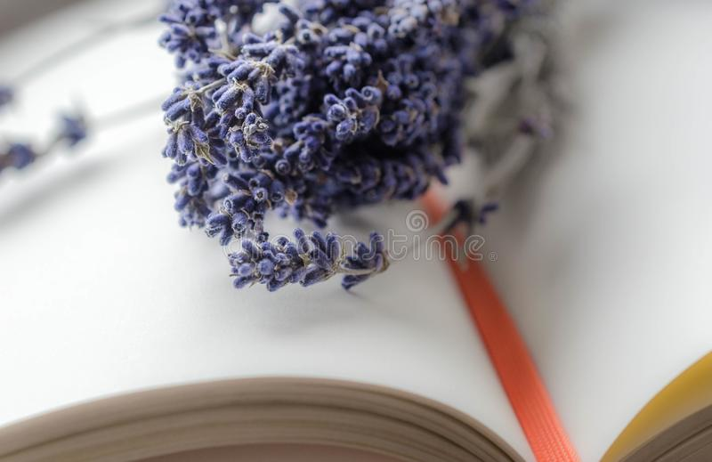 Lavender and Book stock photos