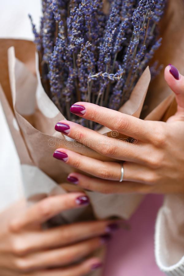 Lavender bouquet in female hands stock image