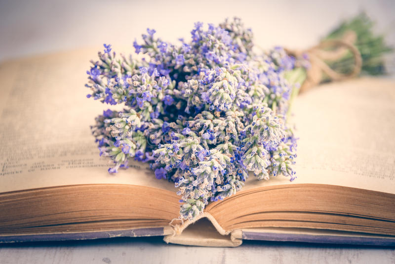 Lavender bouquet laid over an old book on a white wooden background. Vintage style. royalty free stock photo