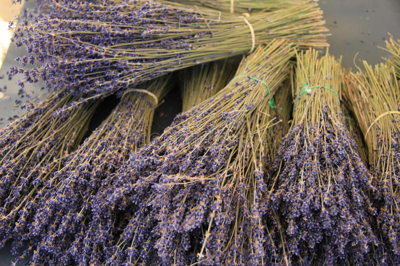 Lavender bouquets royalty free stock images