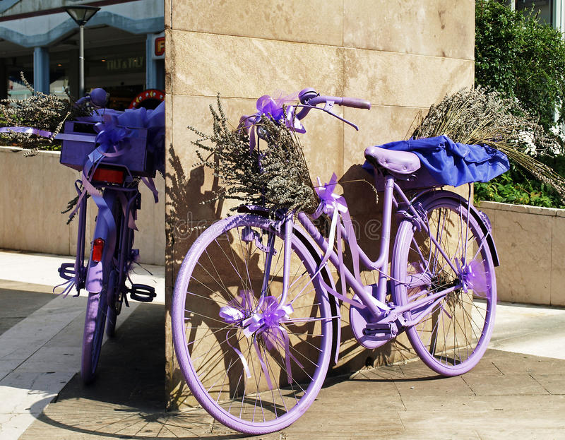 Download Lavender bycicle stock image. Image of bike, style, town - 16413667