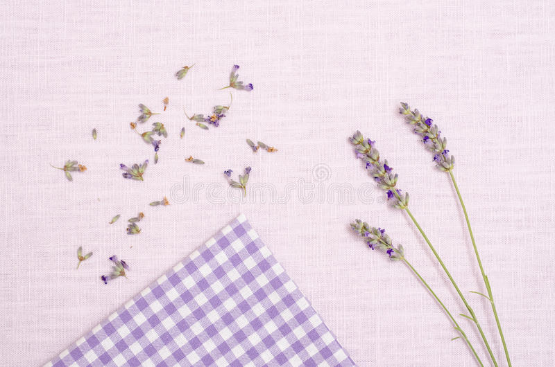 Download Lavender on a cloth stock image. Image of smell, white - 34271415
