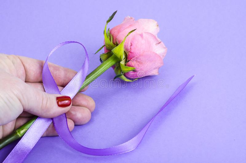 Lavender color ribbon, symbolizing awareness for all cancers, february 4th, world cancer day. Studio Photo stock photo