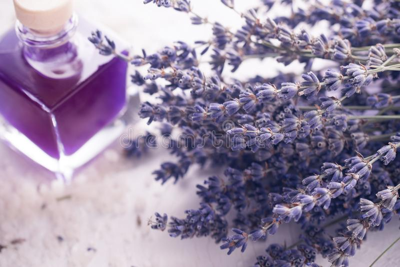 Lavender dried flowers macro photo. Toned. Space for text. Spa and relax concept. stock image