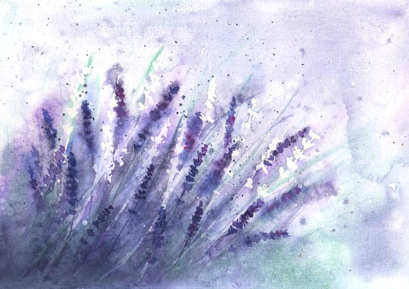 Lavender field background. Watercolour hand drawn flowers, leaves, plants vector illustration