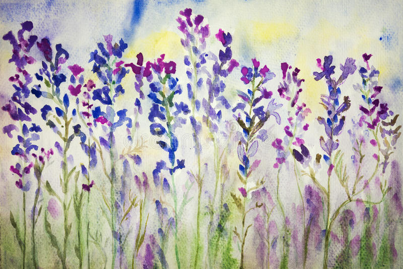 Lavender in the field. Watercolour painting. stock illustration