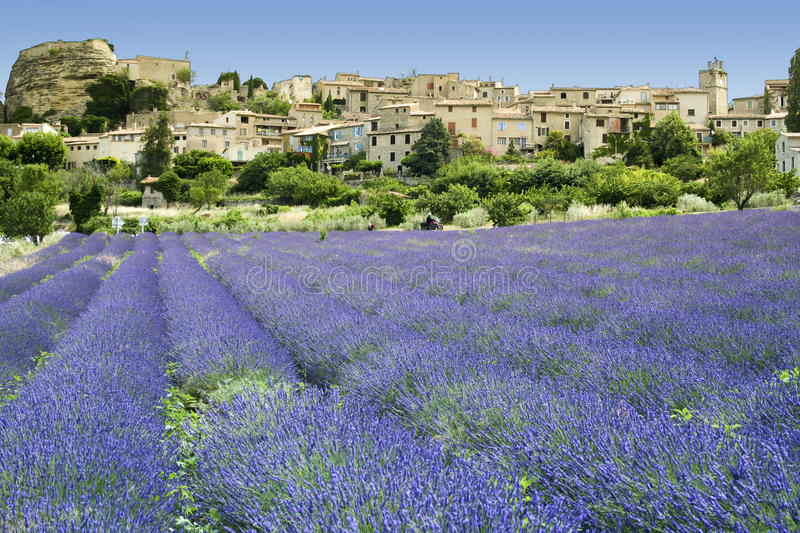 Lavender fields landscape hilltown provence france stock images