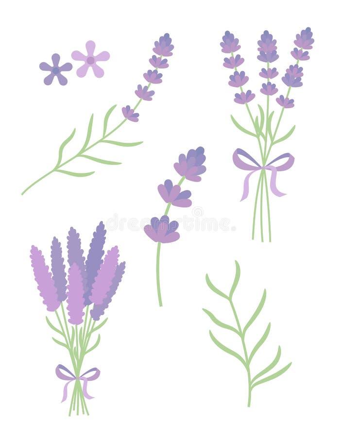 Free Lavender Flat Vector Set Stock Photo - 61803760