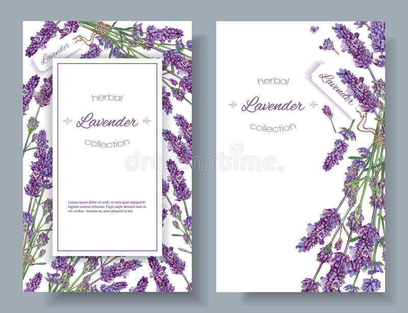 Lavender flowers banners royalty free illustration