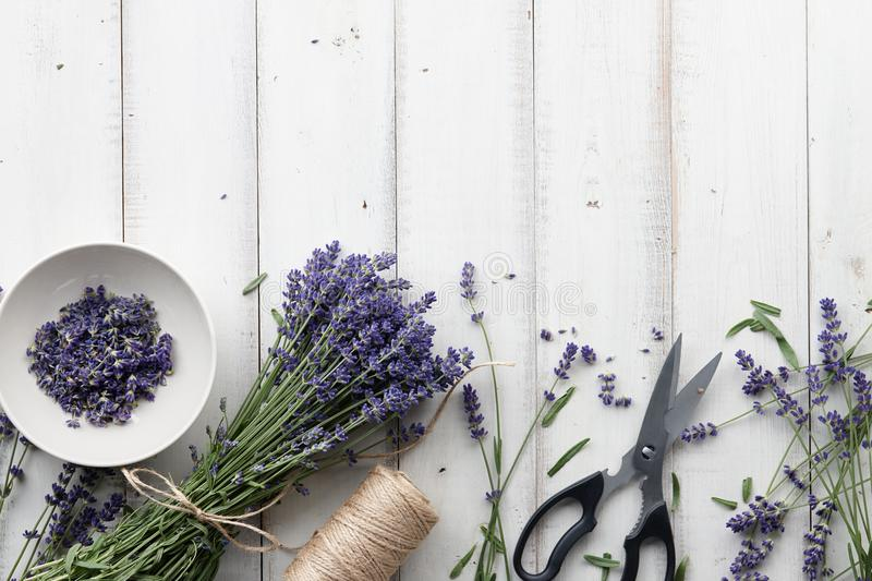 Lavender flowers bouquet on white wooden planks. Composing and binding beautiful lavender flowers bouquet on white wooden planks background, top view royalty free stock images
