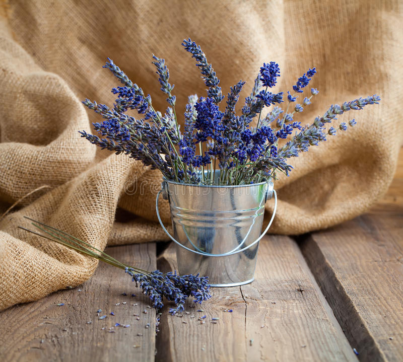 Download Lavender Flowers In An Iron Bucket Stock Photo - Image: 83724032