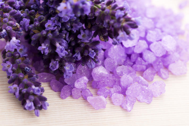 Lavender flowers in a mortar royalty free stock images