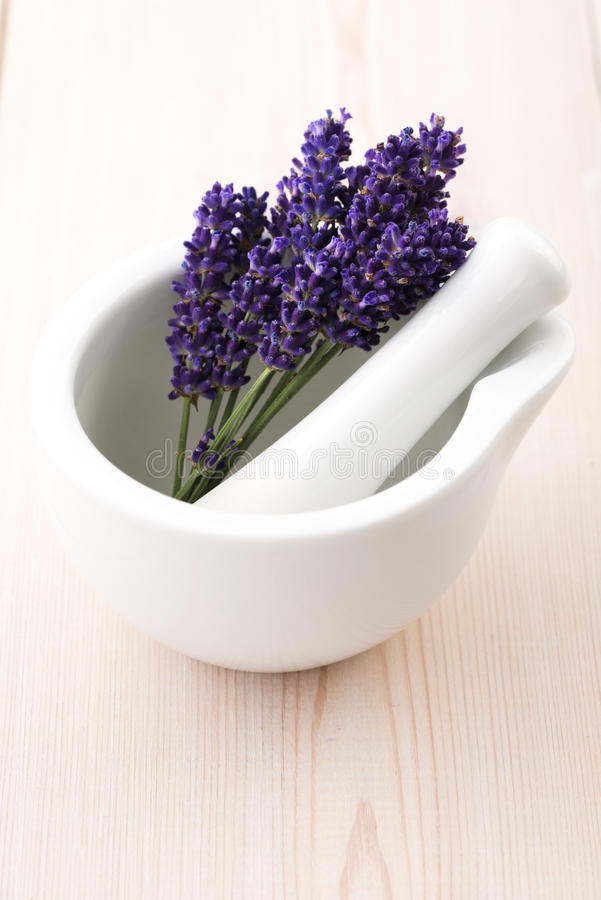 Lavender flowers in a mortar stock photos