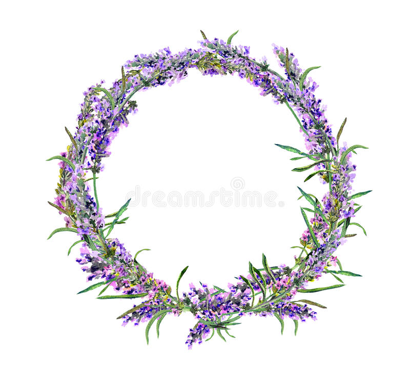 Lavender flowers wreath. Watercolor. Round floral border royalty free stock photography