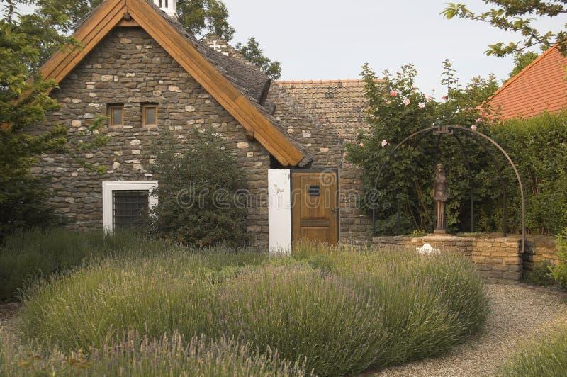 Lavender garden royalty free stock image