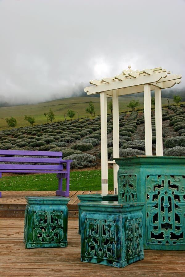 Download Lavender gardens in Maui stock illustration. Illustration of field - 22001341