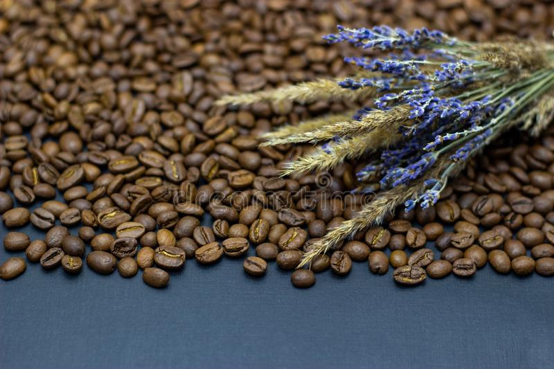 Lavender grains and coffee beans place for text background. Lavender grains and coffee beans place for text stock photos