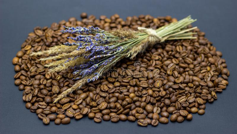 Lavender grains and coffee beans place for text background. Lavender grains and coffee beans place for text royalty free stock photos