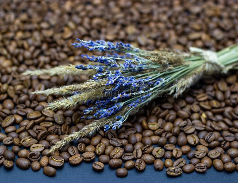 Lavender grains and coffee beans place for text background. Lavender grains and coffee beans place for text stock photo