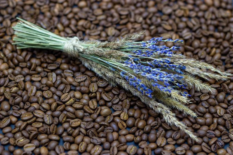 Lavender grains and coffee beans place for text background. Lavender grains and coffee beans place for text stock images