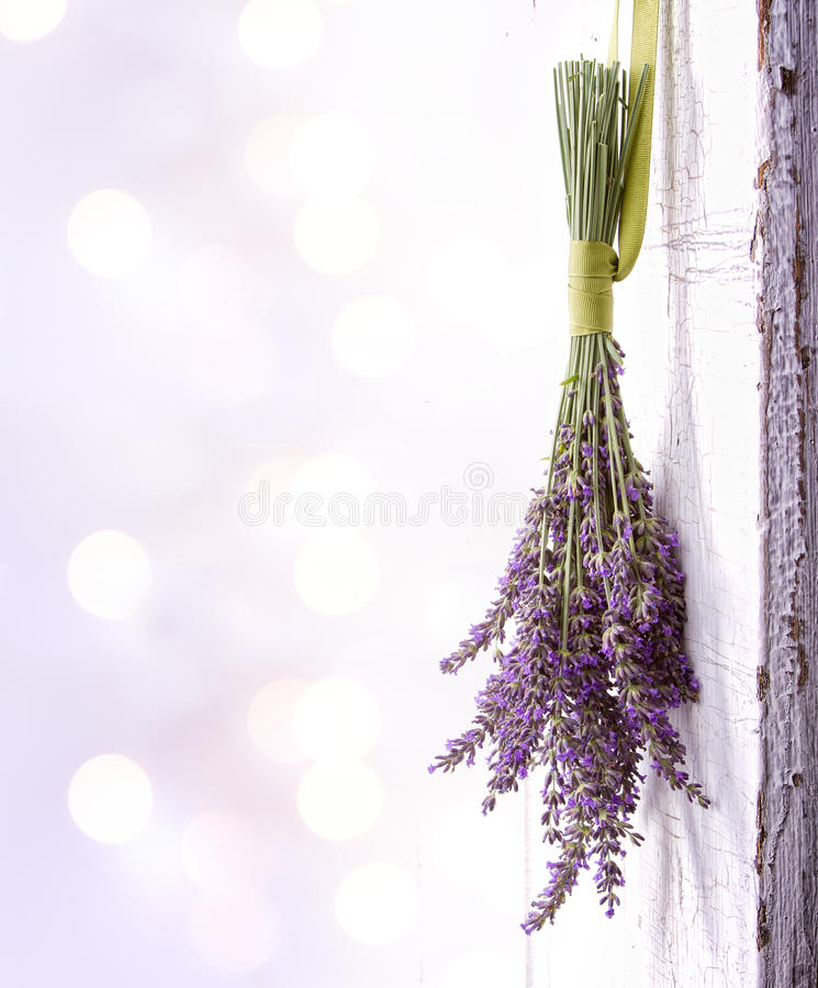 Download Lavender Hanging From An Old Door Stock Photo - Image of aged, herbal: 26611798