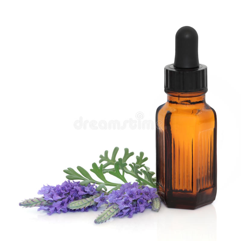 Lavender Herb Flower Essence. Lavender herb flower leaf sprigs with an aromatherapy essential oil dropper bottle, isolated over white background stock photo